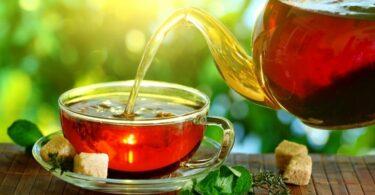 basil tea benefits